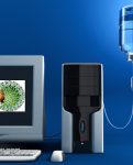 A H1N1: de Virus Real a Virus Virtual