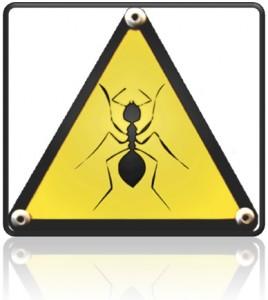 Hormigas inspiran desarrollo de antivirus