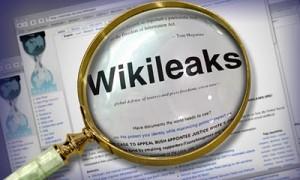 El caso WikiLeaks desató una pequeña guerra informática