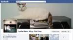 Facebook quiere eliminar 83 millones de cuentas falsas
