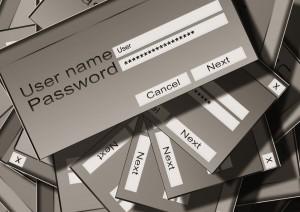 Rafael Núñez - Seguridad digital