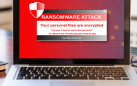 Ataque de ransomware forzó el cierre de reconocida empresa de hosting