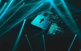 Pentesting, la hora de los hackers