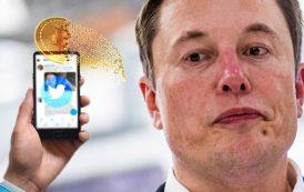 Reputación de Elon Musk en Twitter cae tras distanciarse de bitcoin